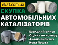 Скупка каталізаторів та сажових фільтрів з авто